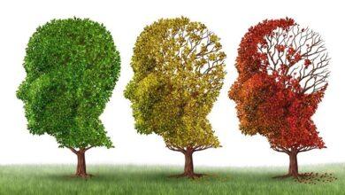 Alzheimer Hastalığı ve Bunama